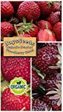 Organic Scarlet Strawberry 315 Seeds Upc 600188190830 + 1 Free Plant Marker Photo, best price $5.04 new 2020