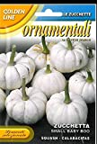 franchi Seeds Ornamental Squash Baby Boo Small courgette Seeds Photo, best price $9.99 new 2020