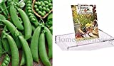 Homegrown Pea Seeds, 130 Seeds, Organic Super Snappy Pea Photo, best price $5.01 new 2020