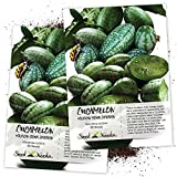 Seed Needs, Cucamelon/Mexican Sour Gherkin (Melothria scobra) Twin Pack of 65 Seeds Each Photo, best price $8.85 new 2020