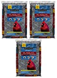 Pennington Select Black Oil Sunflower Seed Wild Bird Seed Feed, 40 Lbs (Pack of 3) Made in USA Photo, best price $79.16 new 2020