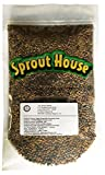 The Sprout House Veggie Queen Salad Mix Certified Organic Non-gmo Sprouting Seeds - Red Clover, Red Lentil, French Lentil, Daikon Radish, Fenugreek 1 Pound Photo, best price $14.90 new 2020
