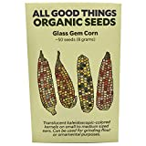 Glass Gem Corn Seeds (~50) by All Good Things Organic Seeds: Certified Organic, Non-GMO, Heirloom, Open Pollinated Seeds from the United States Photo, best price $4.99 new 2020