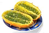 Kiwano, Horned Melon seeds - Cucumis metuliferus Photo, best price $6.73 new 2019