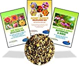 Wildflower Seeds Bulk Perennial Packets - 8 BONUS Gardening eBooks - 87,000 Open-Pollinated, Non-GMO, No Fillers, Annual, Flower Seed For Fall Planting, Bees, Humming Birds, Butterflies, Pollinators Photo, best price $15.99 new 2019