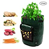 Amerzam 2-Pack 7 Gallon Garden Potato Grow Bag Vegetables Planter Bags with Handles and Access Flap for Grow Vegetables: Potato, Carrot & Onion Photo, best price $19.99 new 2018
