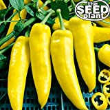 Hungarian Wax Hot Pepper Seeds - 200 Seeds Non-GMO Photo, best price $1.95 new 2020