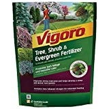 3.5 lb. Tree, Shrub and Evergreen Plant Food-Vigoro-124260 (1 Pack) Photo, best price  new 2019