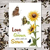 Set of 25 Sunflower Seed Packet Favors (F06) Love Is Grown Great for Weddings (Autumn Beauty Sunflower Seeds) Photo, best price $24.50 new 2019