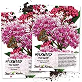Seed Needs, Pink Swamp Milkweed (Asclepias incarnata) Twin Pack of 100 Seeds Each Untreated Photo, best price $7.30 new 2019
